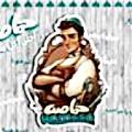 Hamasa El Maadi