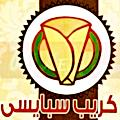 Logo Crepe Spicy Shobra